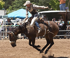 Things to Do in Truckee - 42nd Truckee Pro Rodeo