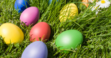 Truckee Things to Do - Easter Egg Hunt